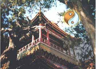 La Teoría del Yin Yang